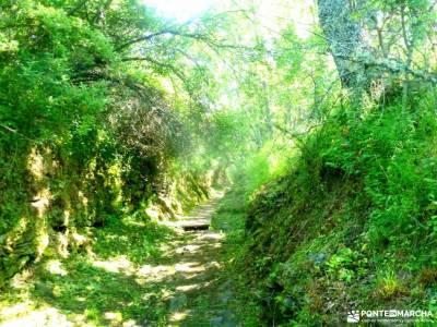 Sierra del Rincón_Montejo de la Sierra_La Hiruela; la garganta del cares tiempo sierra de madrid cir